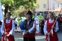 Български фестивал на сливата